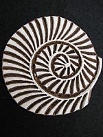 Photo 1 of our Curled shell printing block